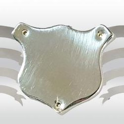 Trophy_Accessories_Category_Images_500x250